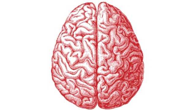 Stimulate right brain activity picture 6