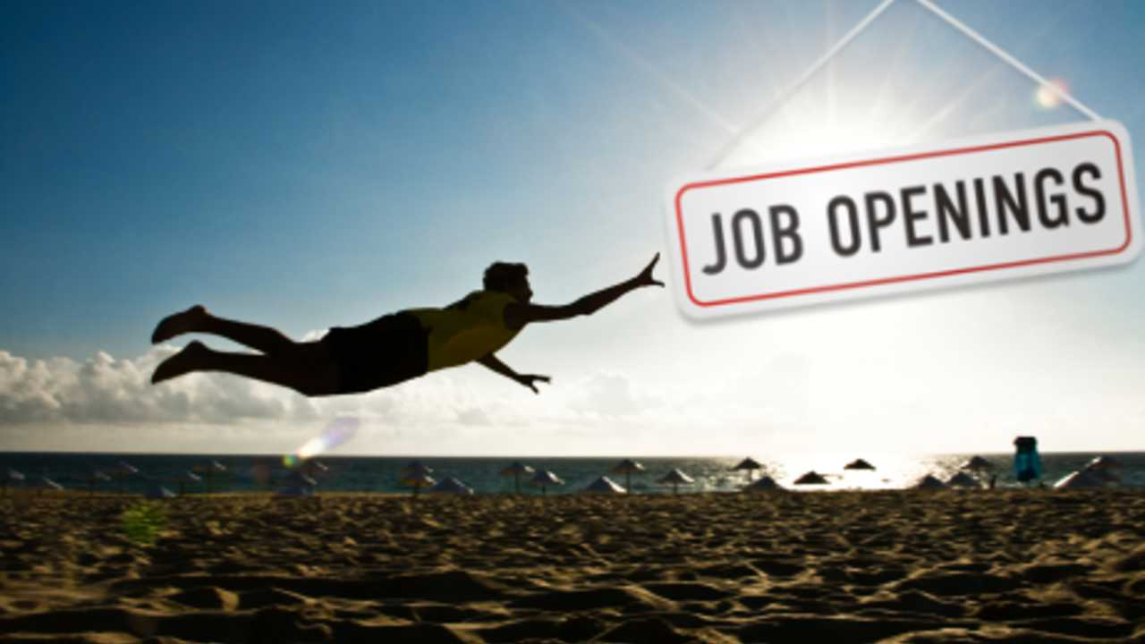 The 12 step guide to finding a summer job | Hexjam