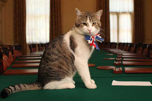 Larry Chief Mouser to the Cabinet Office