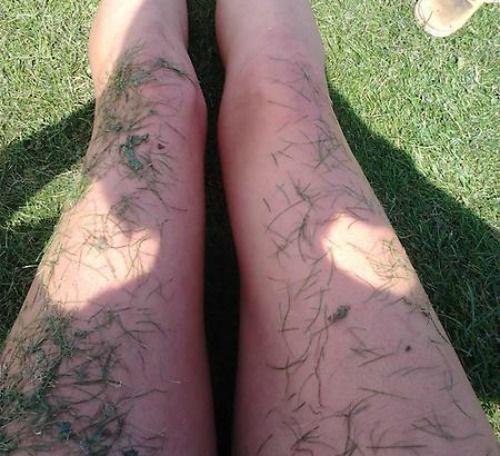 grassy legs
